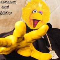 Classic Cold Slither Podcast Episode 43: Word to Big Bird - The PBS episode