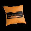 BAS pillow