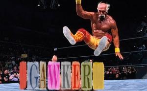 Hogan Gawker