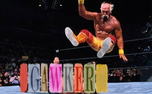Hogan Gawker